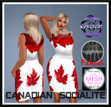 Canadian Socialites Dress